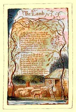 William Blake Songs Of Innocence Tyger
